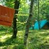 Šotor v gozdu